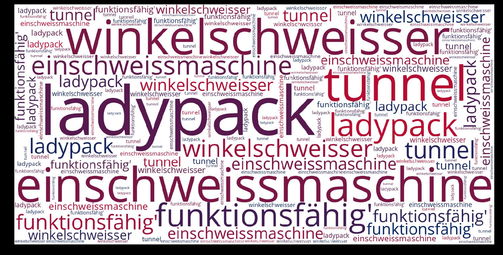 Einschweissmaschine-wordcloud