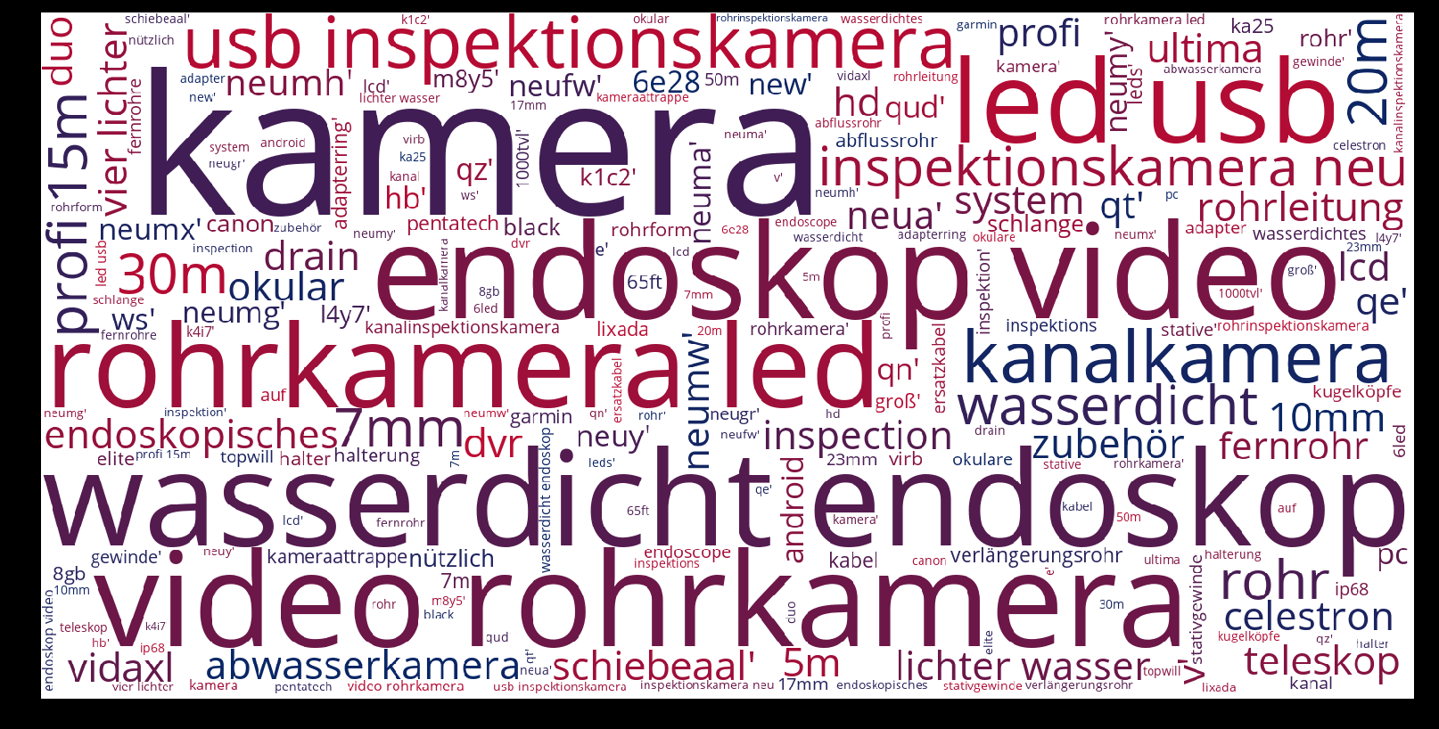 Rohrkamera-wordcloud